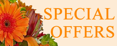 Special Offers October
